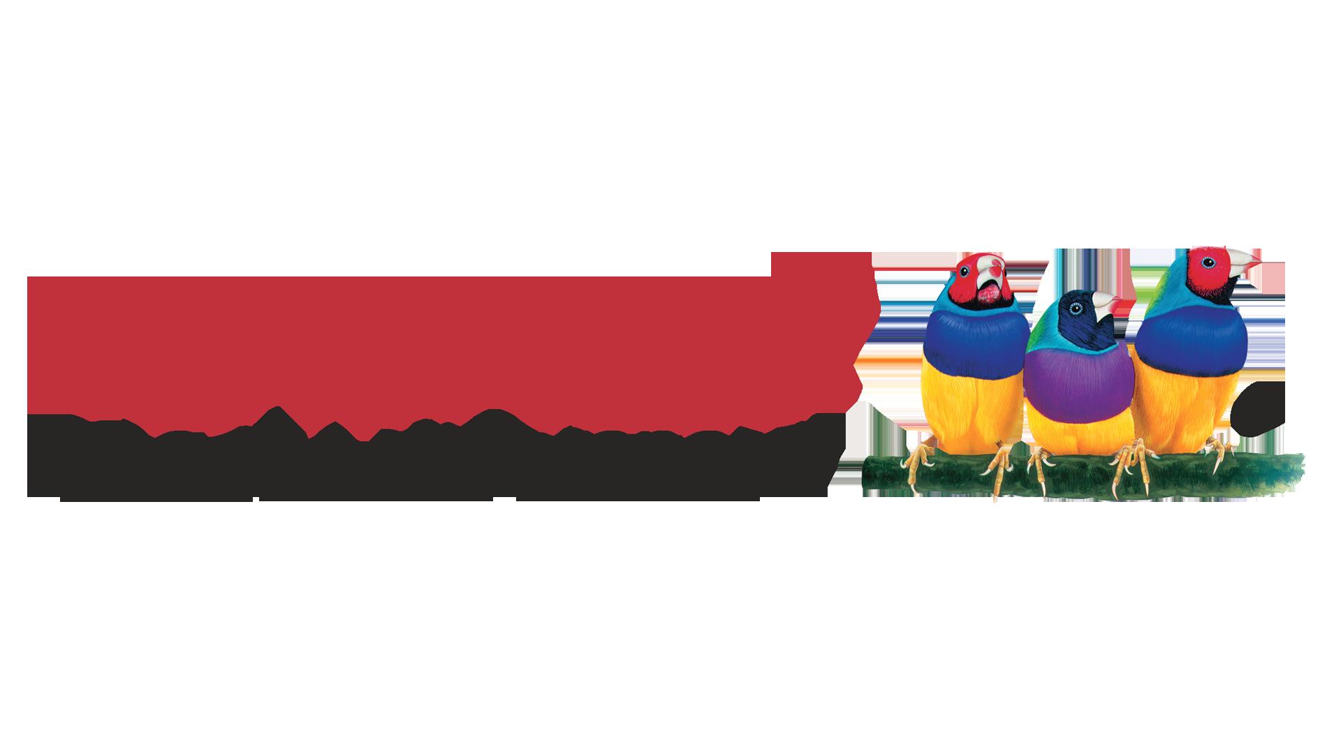 Ремонт ноутбуков View Sonic